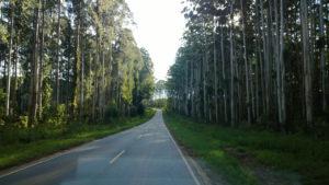 longa estrada para alcançar as faltas